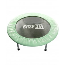 Батут BaseFit TR-101 101 см, зеленый (мятный)